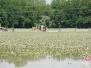 Hochwasser 2013 - Tag 4